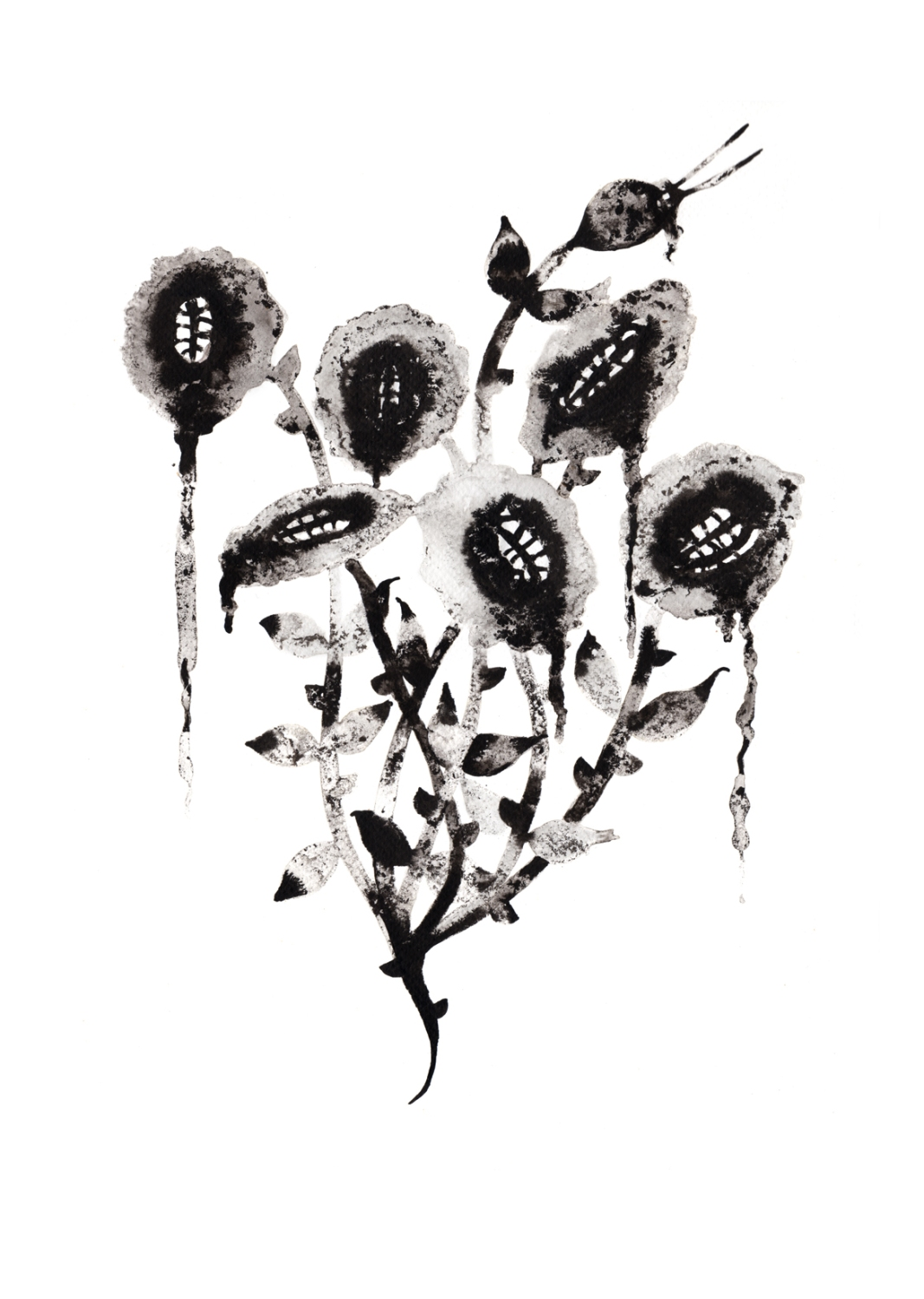 #noumeda, #illustration served, #flowers, #ink