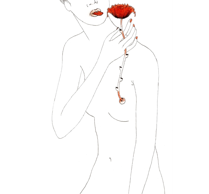 illustration biennal